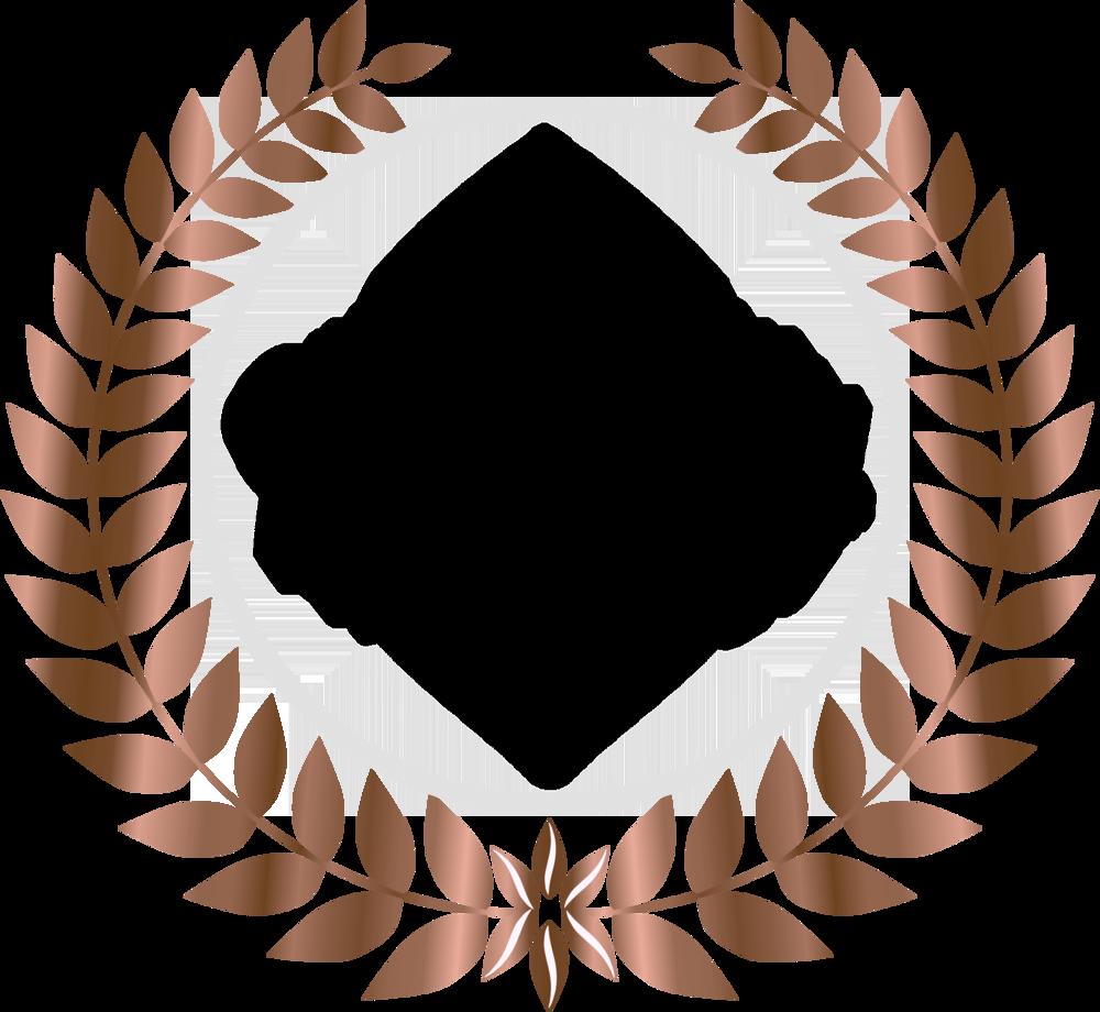 Bronze Organic Beauty Award 2020 logo